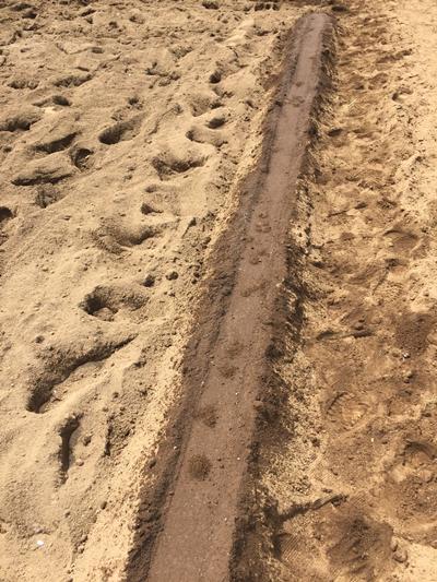 水遣り後の土かけ