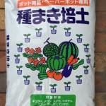 皆さんは種まき用の土は何を使っていますか?