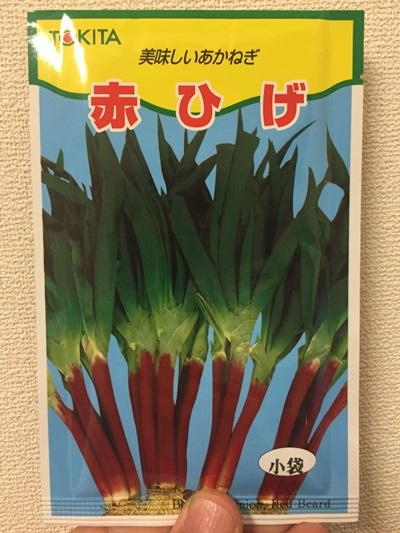 赤ねぎ種袋(表)