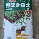 野菜栽培で使う種まき用の土の使い分け