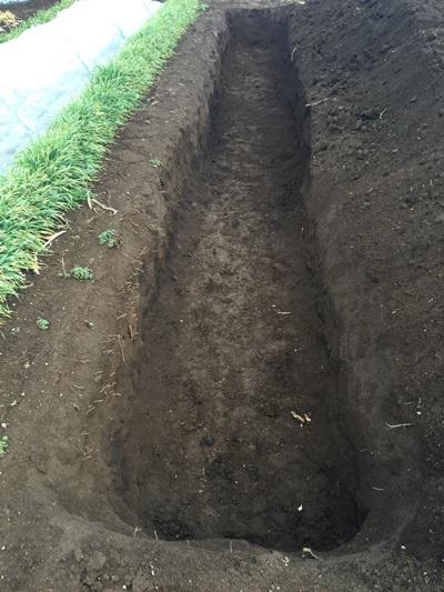 穴掘り完成