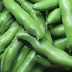 そら豆はビタミンやミネラルがバランスよく含まれる健康野菜!