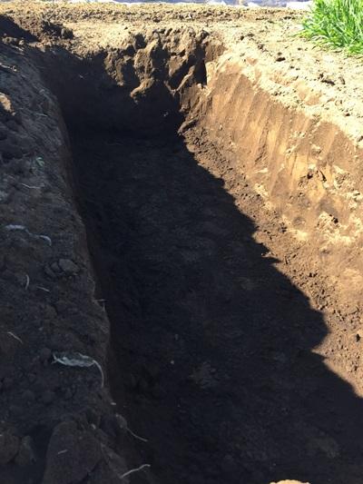 ナス、オクラ栽培用肥料穴